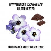 Csokoládé illatú gomolyvirág növényem fa kaspóban
