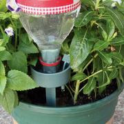 Vízadagoló növényekhez - Pet palack tartó