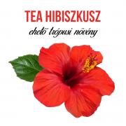 Tea Hibiszkusz növényem fa kaspóban